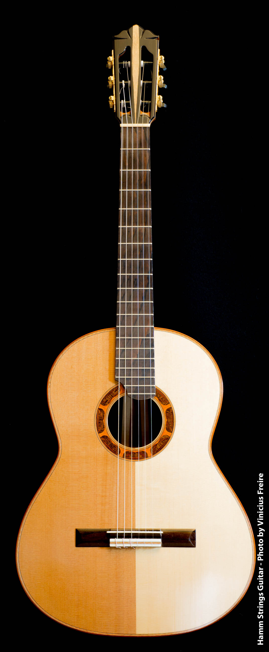 Classical Guitar by Hamm Strings