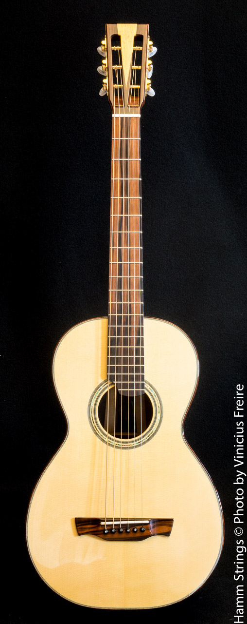 Modified L-00 by Hamm Strings
